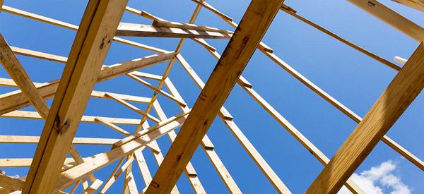 Travaux de charpente et traitement des bois