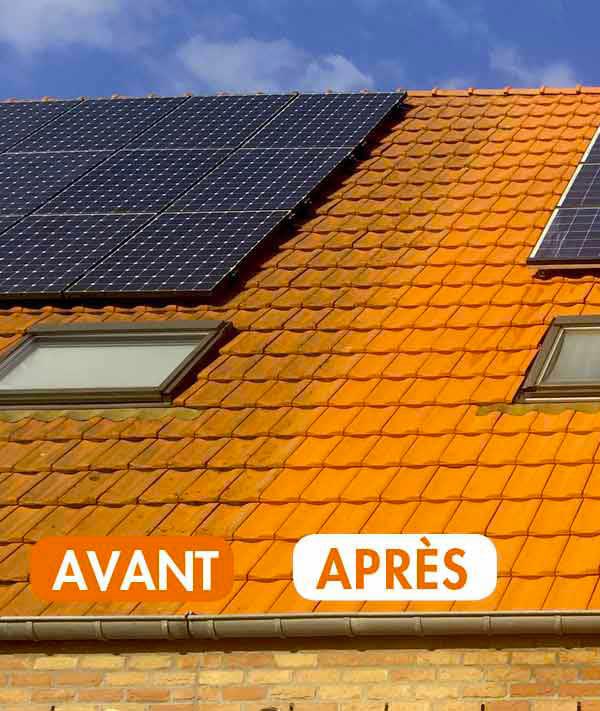 Peinture hydrofuge toiture : MR DELAGE : nettoyage toiture et protection anti-mousse. Revêtement peinture hydrofuge coloré sur la Sarthe 72